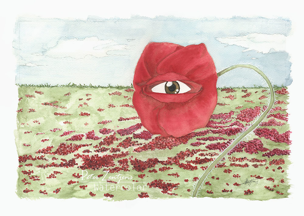 In a field of blind poppies, one eye is king