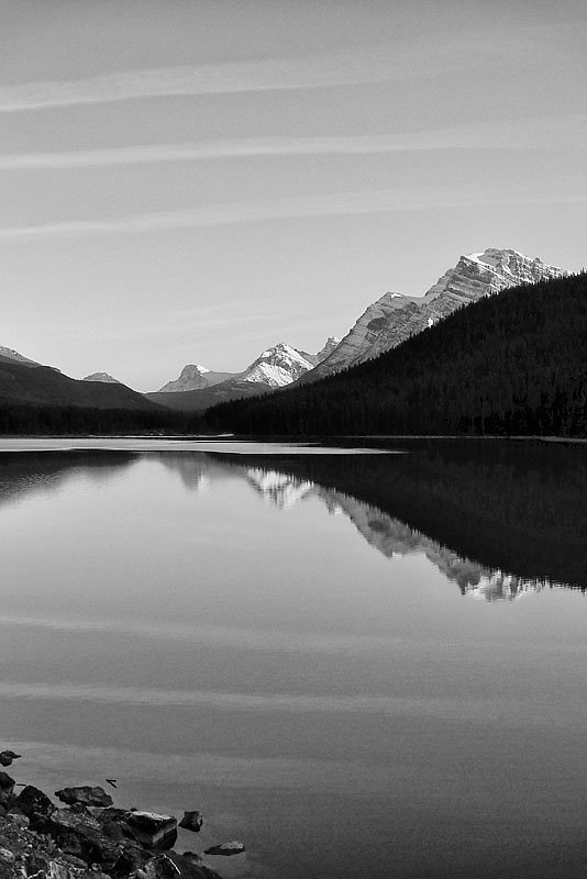 Waterfowl Lake